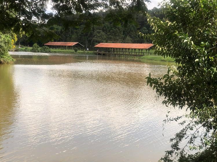 Lago no parque Tingui