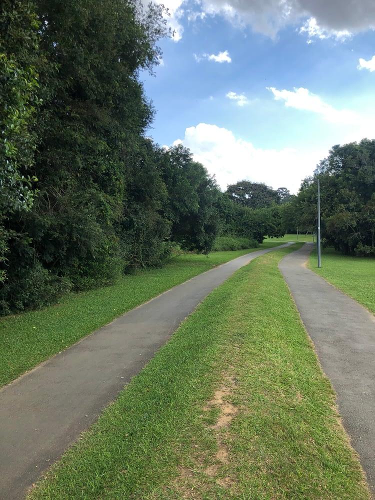 Trilha parque Tingui